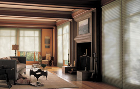 Other Hunter Douglas Blinds & Shades