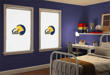 Boise Collegiate Collection Cellular Shades Window
