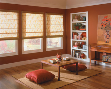 Boise Serenade Roman Shades Window Covering Outlet